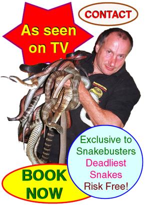 snake remover Melbourne